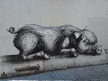 Graffiti of big pig Stock Photography