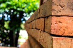 Graffiti brick wall Stock Photography
