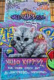 Graffiti of a cat and Tweety bird. In Hosier lane in Melbourne, Australia Stock Photos