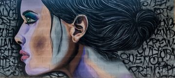 Graffiti d'art de rue d'une belle fille illustration stock