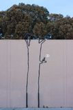 Graffiti del Banksy Immagine Stock
