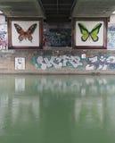 Graffiti della farfalla Fotografia Stock