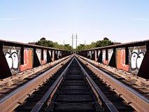 Graffiti della ferrovia Immagine Stock