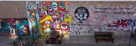 Graffiti della via, Johannesburg Immagini Stock