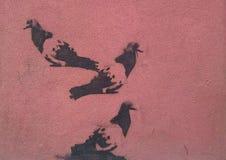 Graffiti des pigeons Photographie stock libre de droits