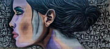 Graffiti di arte della via di bella ragazza illustrazione di stock