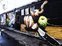 Graffiti di Denver, Colorado Immagini Stock Libere da Diritti