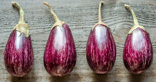 Graffiti Eggplants Royalty Free Stock Photo