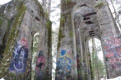 Graffiti en bomen Royalty-vrije Stock Afbeeldingen