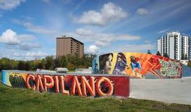 Graffiti et graphiques de parc de planche à roulettes Photos libres de droits