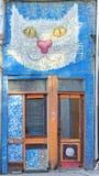 Graffiti with a head of cat - Veliko Tarnovo, Bulgaria. Royalty Free Stock Photo
