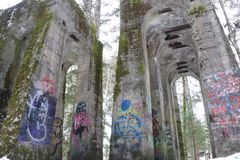 Graffiti i drzewa obrazy royalty free