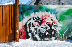 Graffiti with image of tiger on gate in private sector, Gomel, Belarus. GOMEL, BELARUS - MARCH 5, 2018: Graffiti with image of tiger on gate in private sector Royalty Free Stock Images