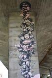 Graffiti intéressant créé par des fans de club du football de Legia Varsovie Photographie stock libre de droits