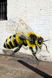 Graffiti of large bee Stock Photos