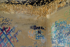 Graffiti and mud dabber nests in an old shack. Stock Image