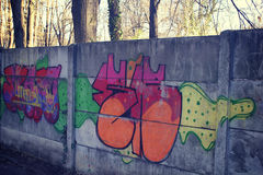 Graffiti nel parco Immagini Stock Libere da Diritti