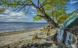 Graffiti par la mer Photos libres de droits