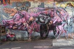 Graffiti of a pig. In AC/DC lane in Melbourne, Australia royalty free stock images