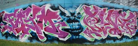 Graffiti rybiego oka panorama ilustracja wektor
