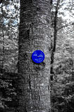 Graffiti on a Trail Marker Royalty Free Stock Photos