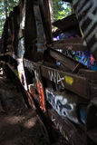 Graffiti Train Wreck in Whistler Royalty Free Stock Images