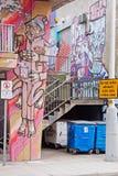 Graffiti urbani Fotografie Stock