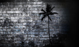 Graffiti Wall Palm Tree Background Royalty Free Stock Photo