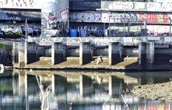 Graffiti Wall Royalty Free Stock Photo