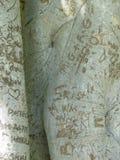 Graffitied tree trunks Royalty Free Stock Photos