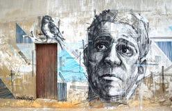 Graffitikunst des Gesichtes und des Vogels Lizenzfreie Stockfotos