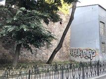 Graffitiwall in oldcity Royalty-vrije Stock Foto