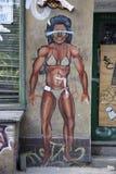 Graffity Foto de Stock Royalty Free