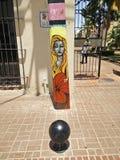 Graffityi med en kvinna och en blomma på kolonnen Royaltyfria Bilder