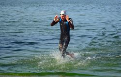 Leading Competitor  Leaving the water at the end of the swim. Royalty Free Stock Photos