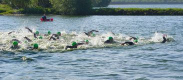 Competitors swimming at the beginning of the swimming stage of Triathlon. Royalty Free Stock Images