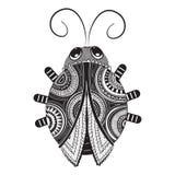 Grafici in bianco e nero di Ladybird Immagini Stock Libere da Diritti