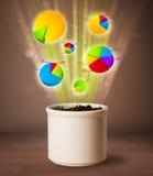 Grafici che escono dal vaso da fiori Fotografie Stock Libere da Diritti