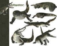 grafici dell'alligatore 3D Immagine Stock