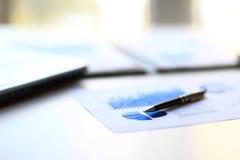 Grafici della gestione finanziaria Fotografia Stock Libera da Diritti
