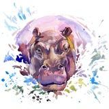 Grafici della maglietta dell'ippopotamo, illustrazione africana dell'ippopotamo degli animali Fotografie Stock
