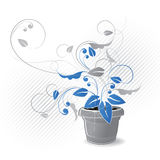 Grafico conservato in vaso della pianta Fotografia Stock