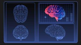 Grafico del wireframe del cervello sullo schermo di monitor Fotografia Stock
