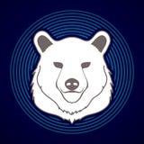 Grafico della testa di Big Bear Fotografia Stock Libera da Diritti