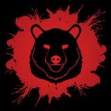 Grafico della testa di Big Bear Immagini Stock