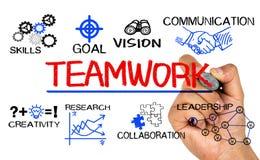 Grafico di concetto di lavoro di squadra con gli elementi di affari Fotografia Stock