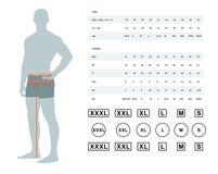 Grafico di dimensione per gli uomini royalty illustrazione gratis