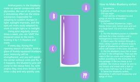 Grafico di informazioni circa le proprietà utili del succo del mirtillo e un metodo di preparazione del succo Immagini Stock Libere da Diritti