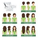 Grafico di lunghezza dei capelli Fotografia Stock Libera da Diritti
