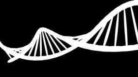 Grafico di moto del DNA, alfa canale video d archivio